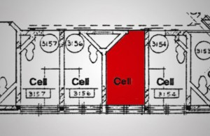 Architects cell